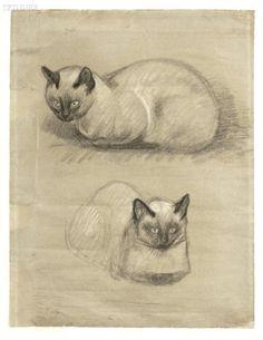 T.A. Steinlen : Siamese Cats