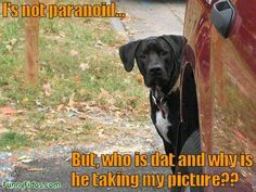 Not Paranoid But....