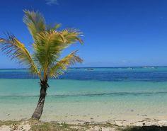 Das Wasser schimmert in den unterschiedlichsten Farben #taipan_mauritius #mauritius #beachcomber Mauritius, Hotels, Strand, Beach, Outdoor, Tropical Paradise, Ocean, Island, Water