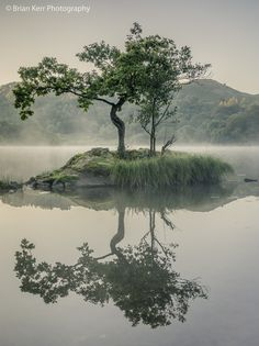 """""""A misty morning on Rydal Water in the Lake District."""" by Brian Kerr"""