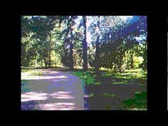 A RIDE TO THE SUN..HUNSTANTON 26-6-2011.wmv