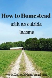 Homesteading with no outside income? Yes, it's tough but possible! Here are 11 tips on how to do it.