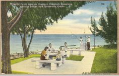 Vintage linen postcard of a picnic area on Courtney Campbell Causeway between Tampa and Clearwater in Florida. Shows a family having a picnic and people fishing.