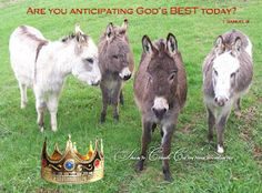 Are You Anticipating God's BEST Today?
