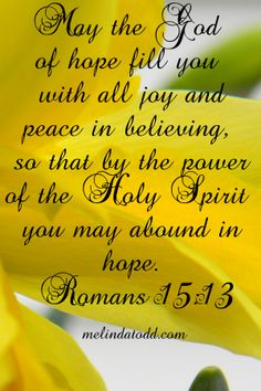 May the Lord of hope fill you with all joy and peace in believing, so that by the power of the Holy Spirit you may abound in hope.  Romans 15:13