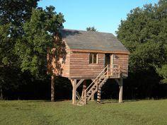 Albero casa confortevole. Casa vacanza numero 1457481. Vedi le foto e la descrizione e prenota online in totale sicurezza.