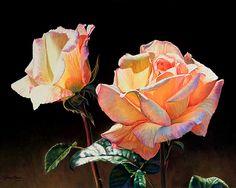 "Rose Opalescence by Lauren Knode Pastel ~ 16"" x 20"""