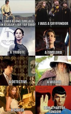 Star Wars, Harry Potter, Lord of the Rings, Hunger Games, Star Trek, Sherlock, Doctor Who... and apparently the last one is Buffy the Vampire Slayer.