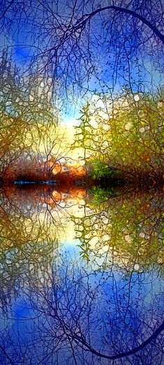 The Light Shines Kindly by Tara Turner