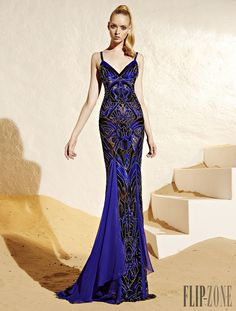 Zuhair Murad Resort 2015 - Έτοιμα-a-porter - http://el.flip-zone.com/fashion/ready-to-wear/fashion-houses-42/zuhair-murad-4848