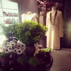 Milan, shopping spots, #conceptstores #tearose