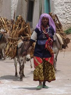 Bringing the wood into town (Harar) by CharlesFred, via Flickr  Ethiopia, Africa.
