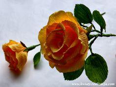 Klasyczna róża - Instruktaż - Najpiękniejsze kwiaty z bibuły - Maria Czupryna