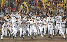 Hanshin Tigers - Victory!