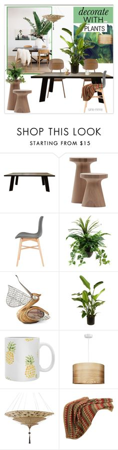 """""""Decorate with plants"""" by rainie-minnie ❤ liked on Polyvore featuring interior, interiors, interior design, home, home decor, interior decorating, Sebastian Professional, Improvements and HiEnd Accents"""