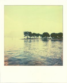 polaroid picture Giovanna Santinolli