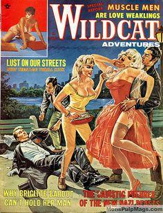 Kuvahaun tulos haulle pulp magazine wildcat