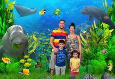 Sydney Aquarium - SmileFlingr