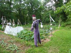 Scarecrows - Vegetable Gardener