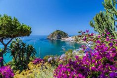 Ischia is laden with beautiful gardens, buried necropolises and spectacular scenery, with forests, v... - gonewiththewind/123RF