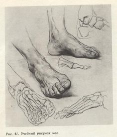 Feet Drawing, Life Drawing, Painting & Drawing, Drawing Faces, Figure Drawing Models, Figure Drawing Reference, Pose Reference, Human Anatomy Drawing, Anatomy Art