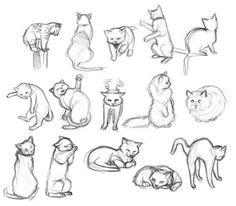 Gatos para dibujar 3 Cat Reference, Drawing Reference, Animal Sketches, Animal Drawings, Drawings Of Cats, Drawing Poses, Drawing Sketches, Drawing Art, Sketching