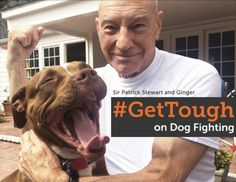 Patrick Stewart;s Foster Pit Bull Inspires Him To Stand Up Against Dog Fighting | The Huffington Post