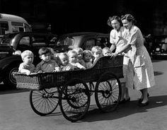 Reg Birkett: Ten babies from Coral Street Day Nursery on their morning outing in a long basketwork pram. September 08, 1955