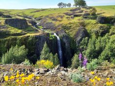 Ravine Falls, North Table Ecological Mountain Reserve, is a hidden gem best viewed in spring.- 30 Must-Do Adventures in California