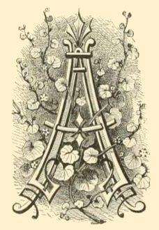 Fancy letter A image with branching vines.