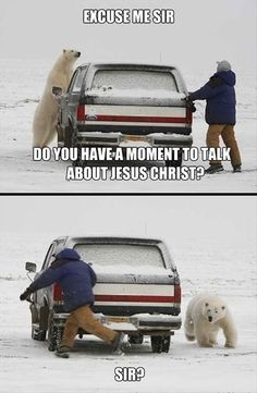 I'd run too....Polar Bear or Moron!