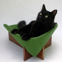 another adorable cat bed