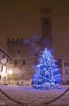 Christmas tree in Tuscany, Italy.