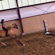 This my first time jumping my new horse and my first time jumping bare back Horses Jumping Videos, Horse Videos, Bareback Riding, Horse Riding, Equestrian Outfits, Equestrian Style, Types Of Horses, Riding Lessons, English Riding