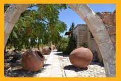 Bilderesultat for Amphora in the garden