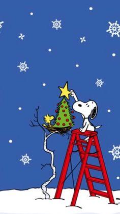 Christmas Jokes, Peanuts Christmas, Christmas Cartoons, Charlie Brown Christmas, Charlie Brown And Snoopy, Christmas Scenes, Christmas Art, Snoopy Feliz, Snoopy And Woodstock