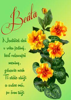 Beáta Nadišiel deň v roku jediný, keď oslavuješ meniny, zdravie nech Ti stále slúži a srdce má, po čom túži Pineapple, Fruit, Plants, Pine Apple, Plant, Planets