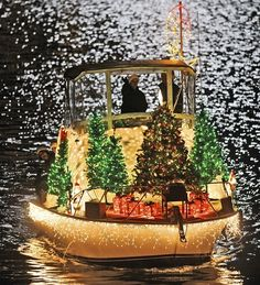 Christmas Parade of Lights in Annapolis. me and my family go see this every year, so cold but totally worth it!