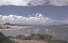 Hokianga Harbour, from which Kupe is said to have returned from Hawaiki.