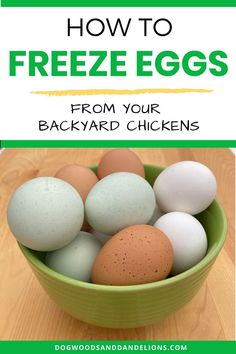 If youve got extra eggs from your backyard chickens why not freeze them? Youll be glad you did this winter when your chickens stop laying. This is also a great way to take advantage of a sale on eggs from the store. Chicken Life, Fresh Chicken, Frozen Chicken, Chicken Eggs, Basic Deviled Eggs Recipe, Best Deviled Eggs, Melon Recipes, Egg Recipes, Freezing Eggs