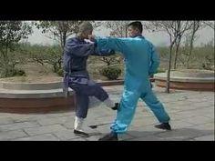 Shaolin 20 methods kung fu (quan shu ershi fa), combat methods - YouTube