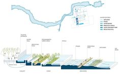 SCAPE: Beijing Horticultural Expo 2019 中国北京世界园艺博览会 Landscape Architecture Drawing, Landscape And Urbanism, Landscape Drawings, Architecture Plan, Landscape Design, Landscape Diagram, Elevation Drawing, Urban Design Plan, Urban Agriculture