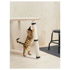 This mat quickly transforms a common table leg into a scratch mat where your cat can stretch and sharpen their claws. A smart and inexpensive way to extend the life of your upholstered furniture. Sisal, Pet Furniture, Upholstered Furniture, Kallax Shelving Unit, Portable Tent, Cat Activity, Agave Plant, Cat Scratching Post, Table Legs