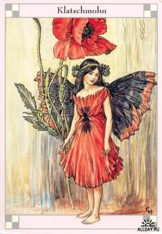 This beautiful Poppy Flower Fairy Vintage Print by Cicely Mary Barker was printed and is an original book plate from the Book of The Flower Fairies. Cicely Barker created 168 flower fairy illustrations in total for her many books Cicely Mary Barker, Fairy Land, Fairy Tales, Vintage Fairies, Flower Fairies, Flower Art, Fantasy Illustration, Illustration Girl, Magical Creatures