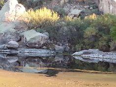 Salt River in Mesa, Az