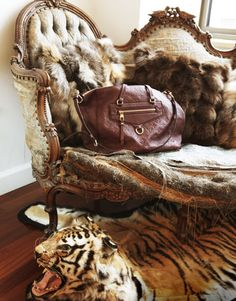 I once stayed in a guest house in Africa that belonged to a King. Swords adored the walls and there was ivory everywhere.There were 2 large rugs on the floor, one Tiger and one Lion and on the hour a Swiss cuckoo clock, with full marching band, would play the most beautiful tune. (Vanessa Traina's Tiger Skin Throw Rug)