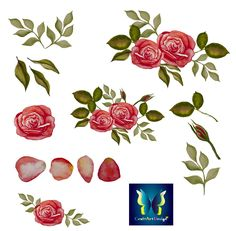 This Clipart Package is for:  Watercolour Roses and Petals Collection  Clipart is perfect for any DIY creative projects, whether its scrapbooking, gift wrapping, invitations and greeting cards, party decoration, backdrops for your photos, stickers, tags, stationary, photo albums, fabric transfers, home decor, web design.....and so much more!  You will be sent a Zip file with the following:  ☆ High Quality : 300 DPI. Perfect printing quality. ☆ PNG format with transparent background…