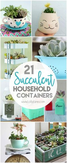 21 household succulent containers. Check out these awesome everyday household items you can transform into pretty succulents! My favorite is the salt and pepper succulents. SO many cute home decor ideas!