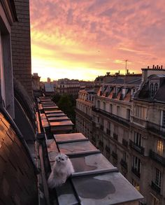Sunset in Paris * >>>>>>>>>>>>>>. by Adenorah. Pretty Sky, Beautiful Sky, Beautiful World, Beautiful Places, Sky Aesthetic, Travel Aesthetic, Aesthetic Anime, Arquitectura Wallpaper, Photo Trop Belle
