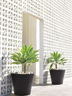 Planters for entrance (would rather they be Terracotta) but I like the look!